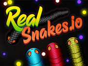 Real Snakes.io