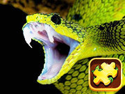 Snake Puzzle Challenge