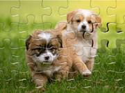 Daily Jigsaw