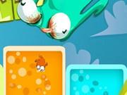 1bird 1color 1target