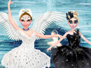 Black And White Swan Battle
