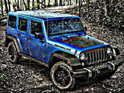 Wrangler Jeep Black Bear