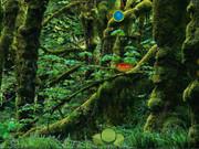 Knf Forest Reindeer Escape