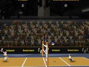 2012 Bunnylimpics Volleyball