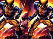 Wolverine Differences