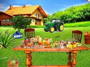 Farm House Party