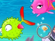 Find Sea Fish