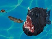 Fish3D.io
