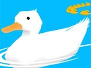 Ducklings Io